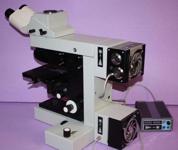 Beispielfoto Mikroskop nicht im Lieferumfang